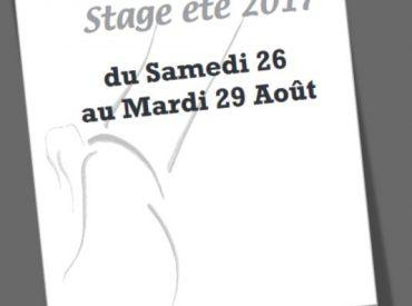 DALEAS DANSE > Stage ETE 2017 (Annecy)